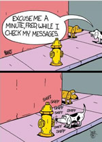 Dog Checks Messages