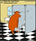 Steer in Bathroom
